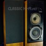 Classic HiFi Realistic Optimus T110